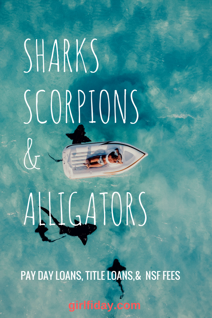 sharks scorpions & Alligators